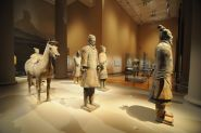 FCA Museum Night - ACM's Terracotta Warriors show